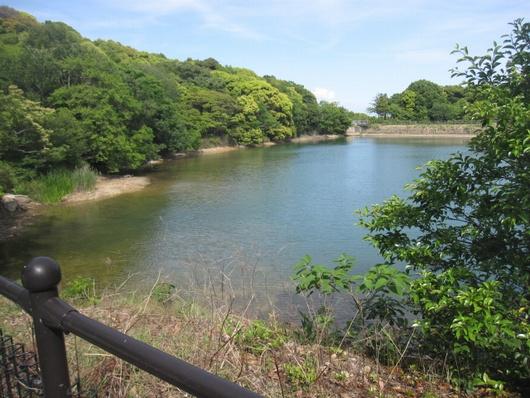 新池風景.jpg