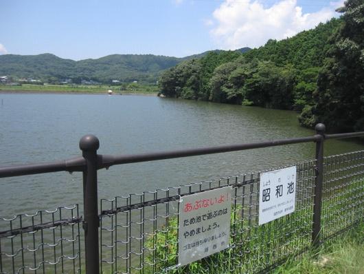 昭和ため池.jpg